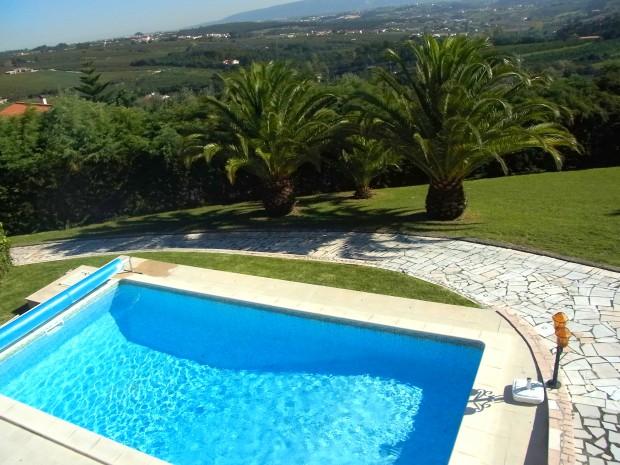 Oprit, zwembad en palmen